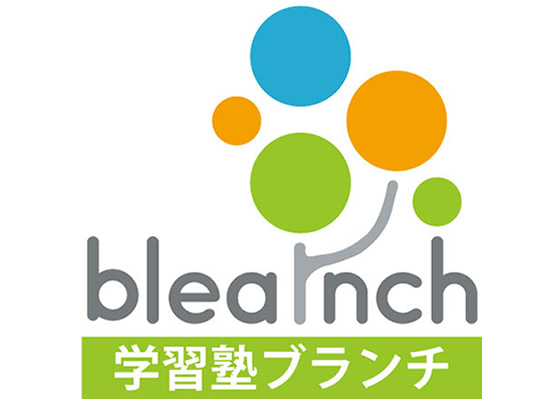 bleanch_ic